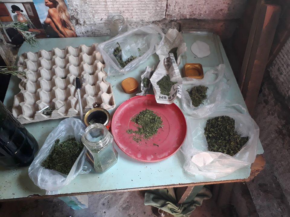 20121171_463385250685553_4659734262099391332_o «Нарисовалось» уголовное дело: аккерманец попросил полицейских помочь, забыв о плантации конопли в огороде