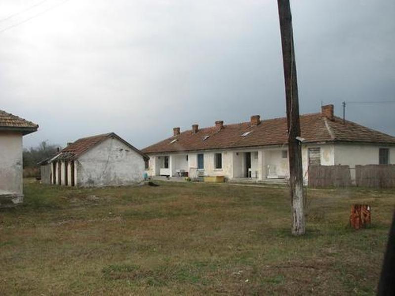 6865748 Визави Вилково: в устье реки Дунай ищут останки узников коммунистического трудового лагеря «Переправа»