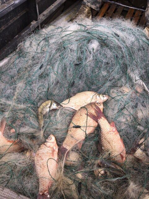 Измаильские пограничники ищут владельцев брошенных на озере Кагул километровой сети и лодки