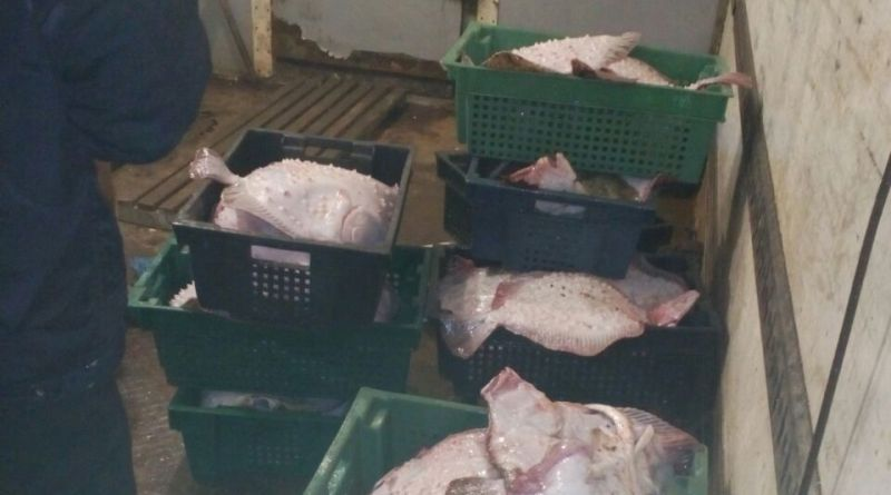За минувшие сутки пограничники задержали браконьеров с уловом на сотни тысяч гривен