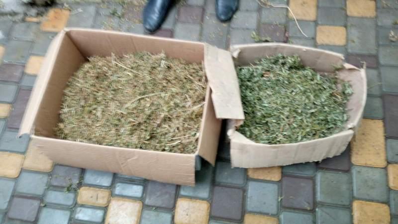 Марихуана коробок выращивание марихуаны статьи рф