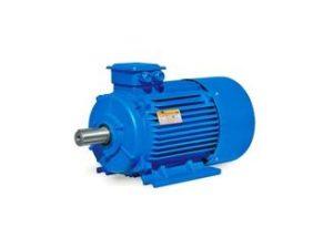 imgpsh_fullsize-1-300x225 Электродвигатели переменного тока: рабочие параметры и особенности эксплуатации