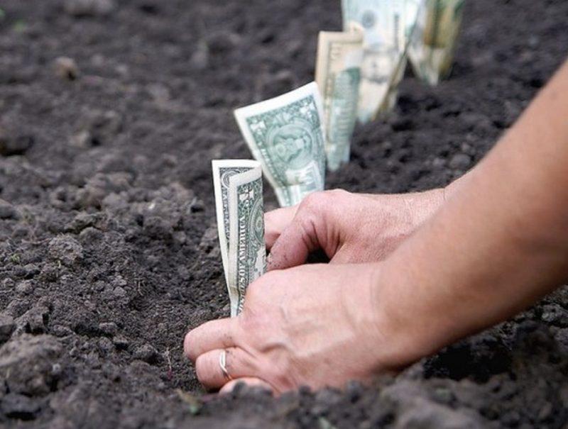 деньги за земельный пай