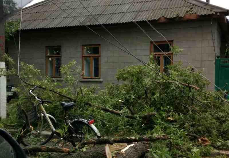 viber-image-3 По Рени и району прокатился ураган, принесший немало хлопот коммунальщикам, местным жителям и фермерам