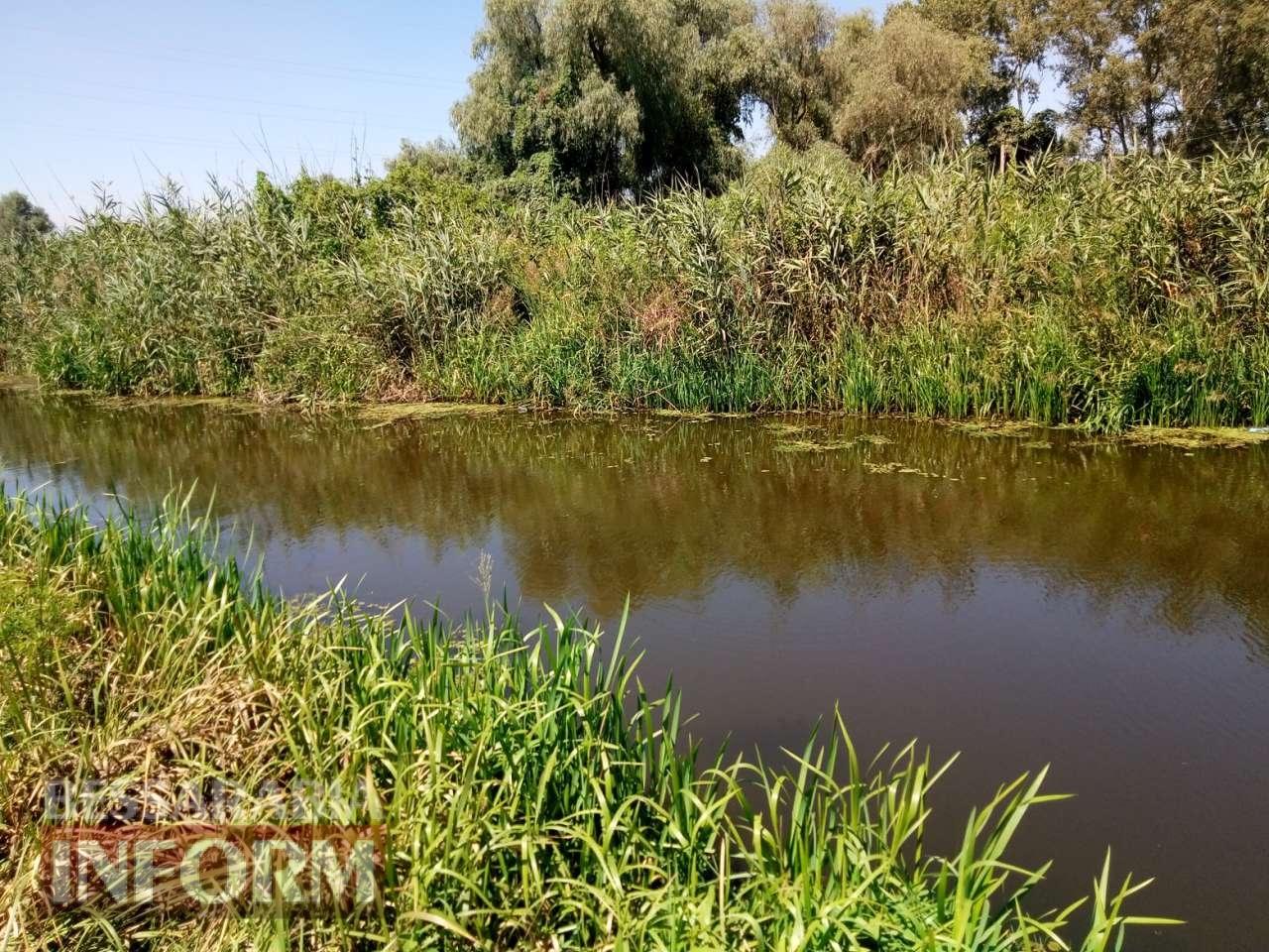 Канал Общественный в Измаильском районе: неужели расчистят?