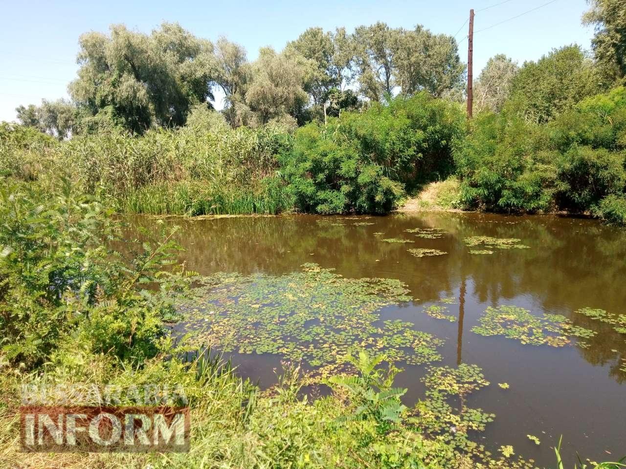 59830e9622c46_vlvlv Канал Общественный в Измаильском районе: неужели расчистят?