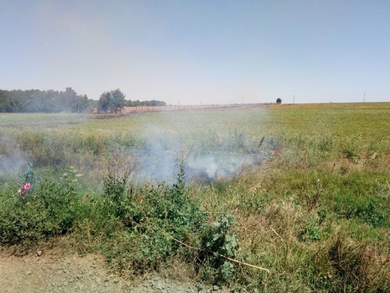P70801-141412-e1501673907961 После нас хоть потоп: владельцы полей продолжают массово выжигать стерню - гибнут растения и животные