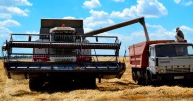 Минэкономики ожидает 15-процентного роста урожая
