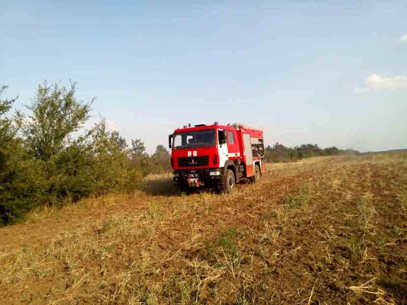 viber-image3 Жара атакует: в Одесской области горел сосновый лес - к тушению привлекали авиацию