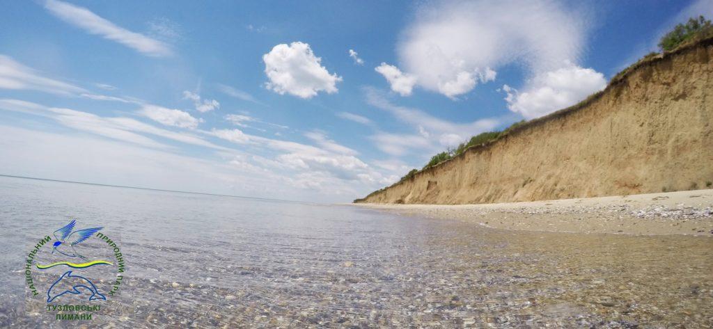 Экологи НПП «Тузловские лиманы» обнаружили место скопления живых моллюсков «крылья ангела»