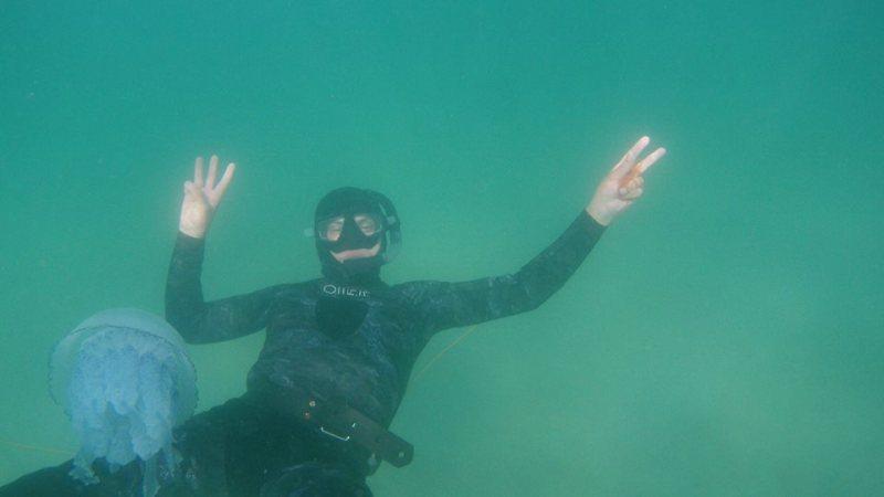 21430393_1582759401785264_3839940600353969779_n На одесском побережье Черного моря запечатлели гигантских медуз