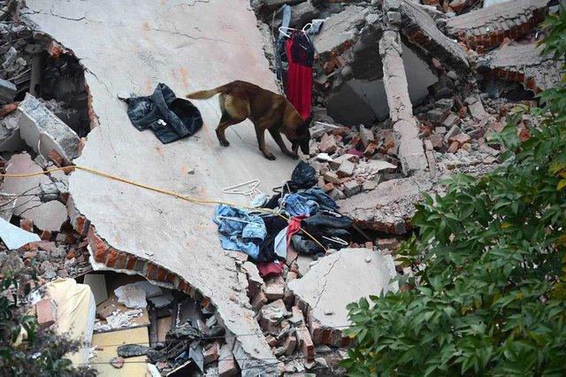 789563_main День в день: спустя 32 года в Мексике вновь произошло разрушительное землетрясение