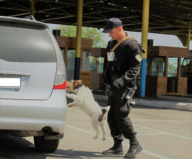 Izobrazhenie-015 Белгород-Днестровские пограничники показали своих потрясающих пушистых помощников