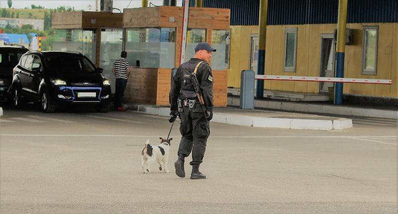 Izobrazhenie-136 Белгород-Днестровские пограничники показали своих потрясающих пушистых помощников