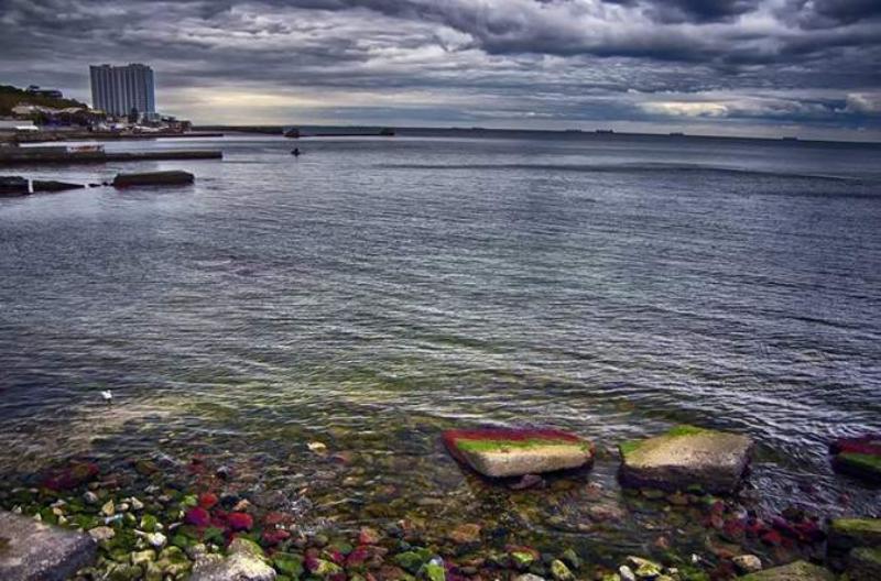 1508332141_24303322 Опасная красота: необычная окраска валунов на одесских побережьях сигнализирует об экологической проблеме
