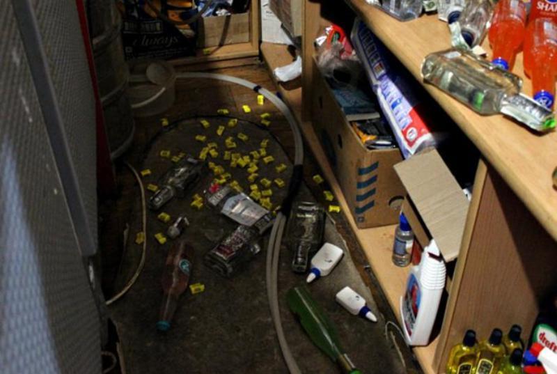 Полосатые выпивохи: в Черновицкой области еноты, разгромившие магазин, третий день страдают от похмелья