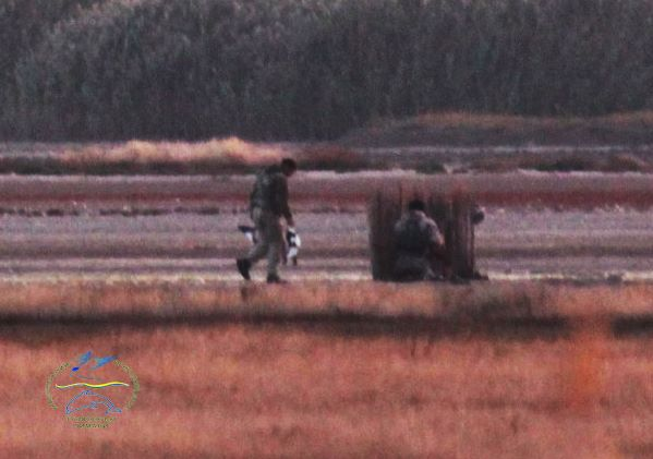 22050370_770492443136850_8201865662472273458_n НПП «Тузловские лиманы»: идиллию краснокнижных птиц, готовящихся к перелету, нарушили выстрелы браконьеров