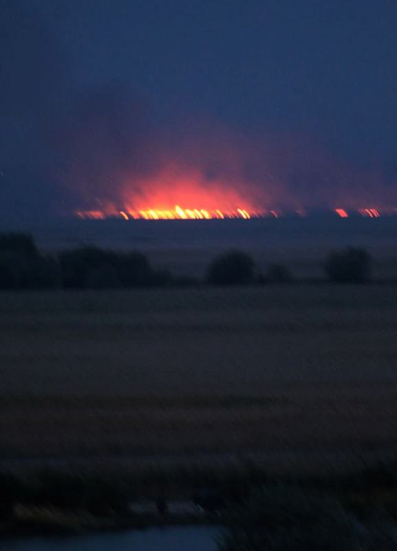 22279752_772270689625692_2779003487016239468_n Пожар в Нижнеднестровском национальном природном парке: пламя было видно с автотрассы М-15