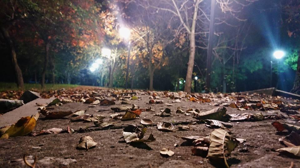 22687570_1502475726473781_8357525355677567090_n Золотая осень в Килии решила надолго не задерживаться (фоторепортаж)
