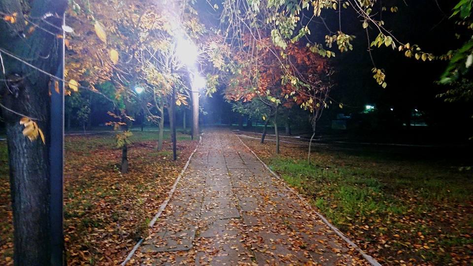Золотая осень в Килии решила надолго не задерживаться (фоторепортаж)