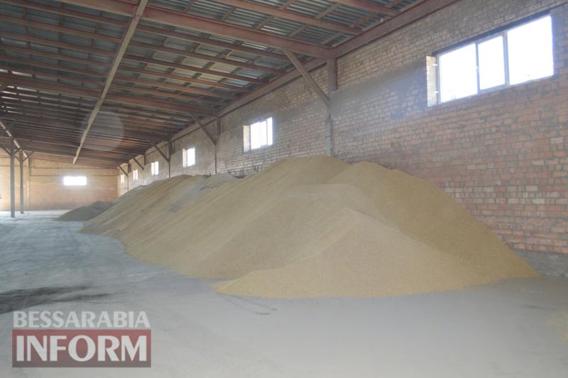 """""""Белое золото"""" Килийщины: особенности выращивания и уборки риса (спецрепортаж """"БИ"""")"""