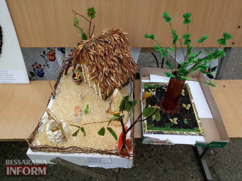 59d64b93632a4_P71005-123956 Школьники Измаильщины представили дары родной земли на ежегодной осенней выставке-ярмарке