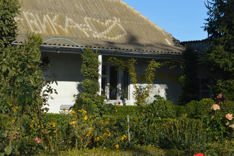 DSC_2554 Романтическая традиция: в селе Килийского района о приближении в доме свадьбы можно узнать… по крыше