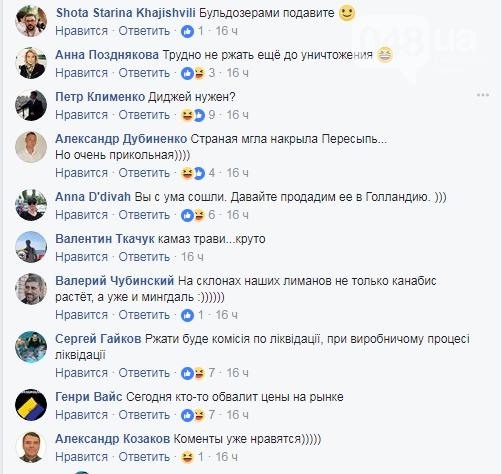 Пост советника полиции о КамАЗе с марихуаной вызвал шквал ироничных комментариев пользователей Facebook