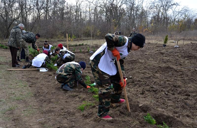 В Измаиле сотрудники лесничества и учащиеся Лесной школы в заповедной зоне заложили новый парк