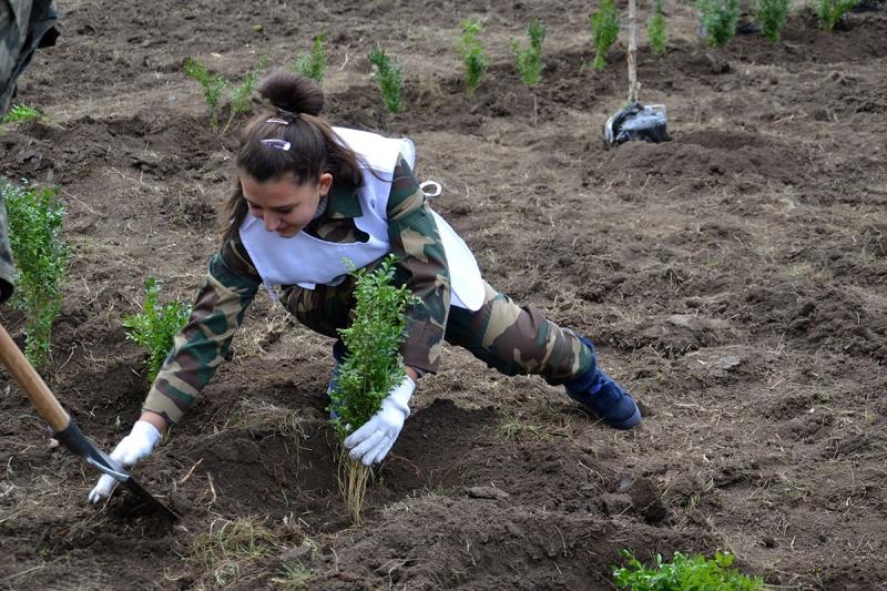 14 В Измаиле сотрудники лесничества и учащиеся Лесной школы в заповедной зоне заложили новый парк