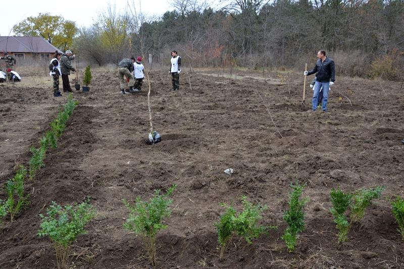 17 В Измаиле сотрудники лесничества и учащиеся Лесной школы в заповедной зоне заложили новый парк