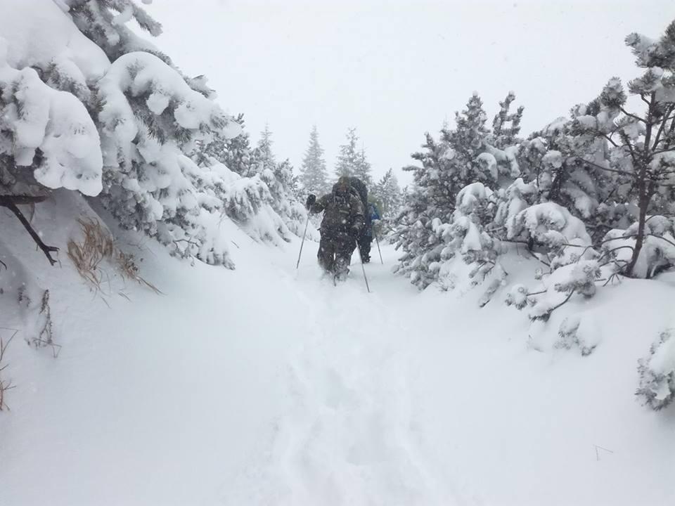 22886232_1460607034008149_4627657616953341090_n В Карпатах местами уже намело 1-2 метра снега