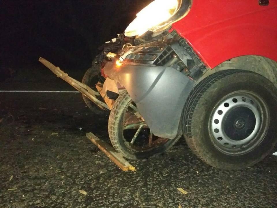 """23376369_512279099129501_3636392424134044490_n В Болградском районе микроавтобус """"влетел"""" в гужевую повозку, три человека и лошадь погибли"""
