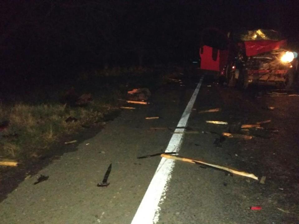 """23559464_512279149129496_7303245635327887588_n В Болградском районе микроавтобус """"влетел"""" в гужевую повозку, три человека и лошадь погибли"""
