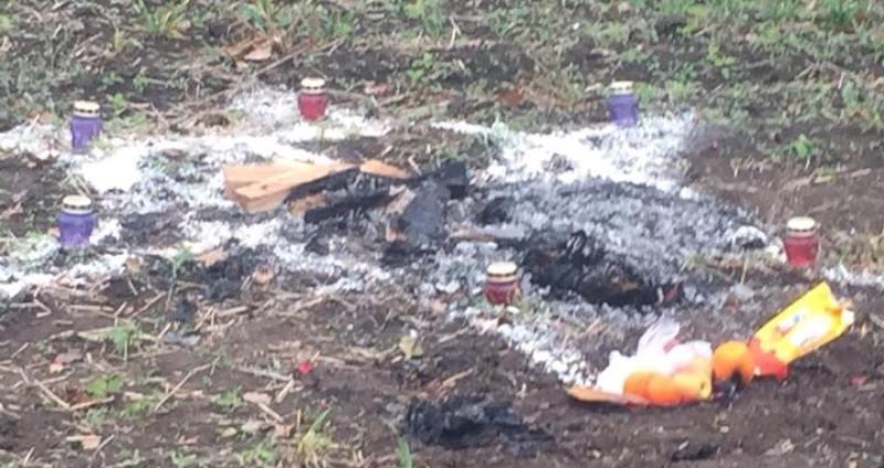 В Овидиопольском районе полиция, СБУ и прокуратура расскрыли ритуальное убийство