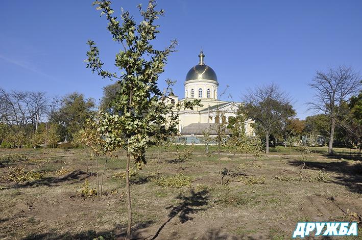 image2_3808 В Болграде на месте запущенного парка появилась дубовая роща