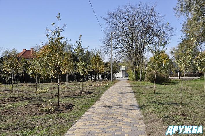 image_3808-1 В Болграде на месте запущенного парка появилась дубовая роща