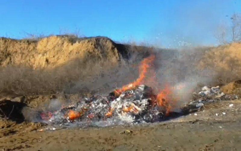 Хорошо горит! - В Белгороде-Днестровском развели большой костер из наркотиков