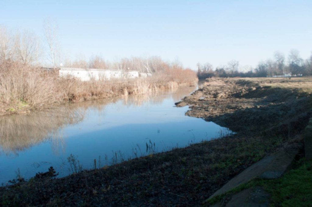 Изможденные Старонекрасовские плавни все не могут напиться: вода из Дуная так и не доходит до озер