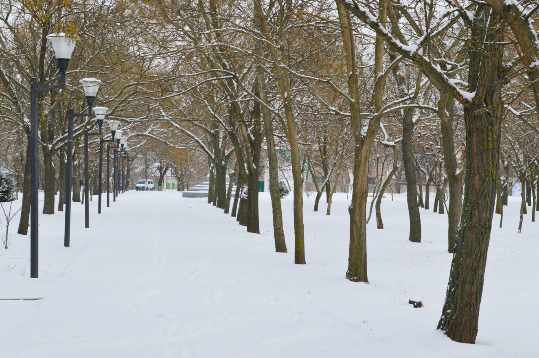 Игры в снежки и санки: килийцы радуются первому снегу (фоторепортаж)