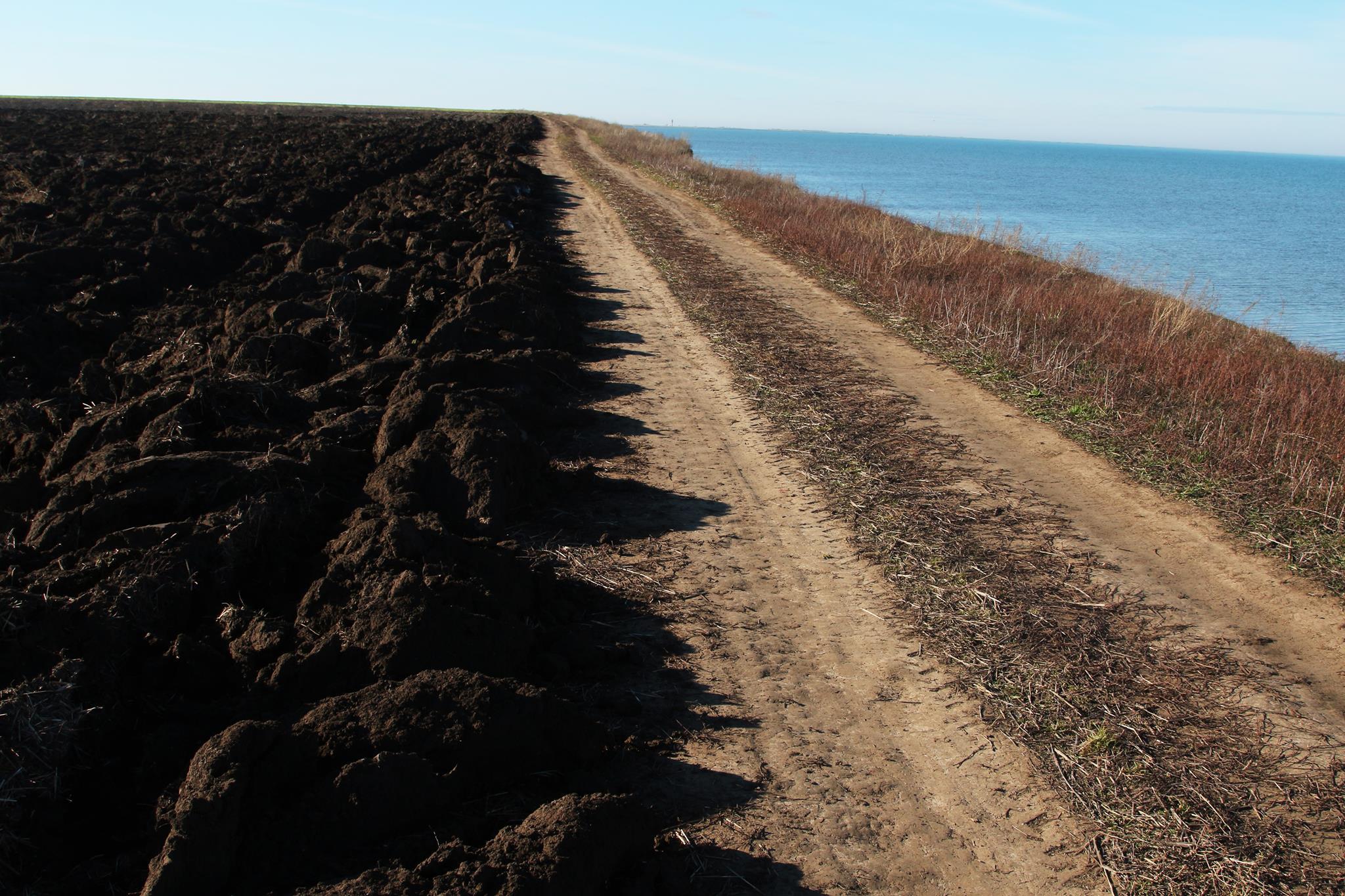 Распашка природоохранных земель в Татарбунарском районе лишила пристанища журавлей