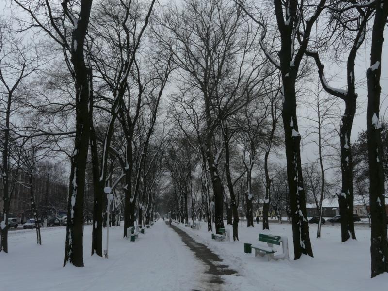В Измаил ненадолго вернулась зима (фоторепортаж)