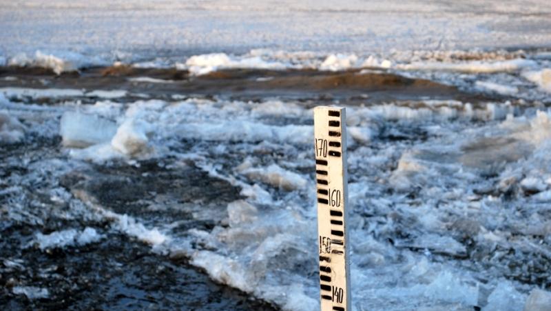 Картинки по запросу весенний паводок на Дунае Одесская область