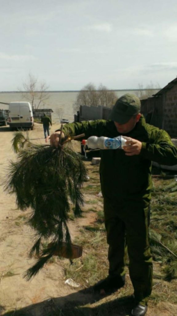 В водоемах Одесской области для нереста судака установили искусственные гнезда