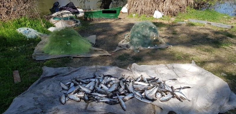 """Измаильские пограничники поймали браконьеров с уловом """"дунайки"""" почти на 30 тысяч гривен"""