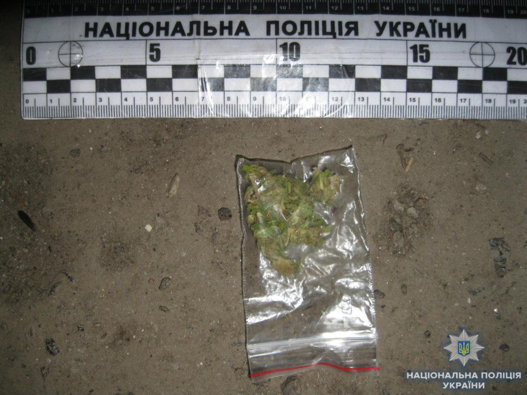 Сотрудники полиции обнаружили наркотические вещества у трех жителей Измаила