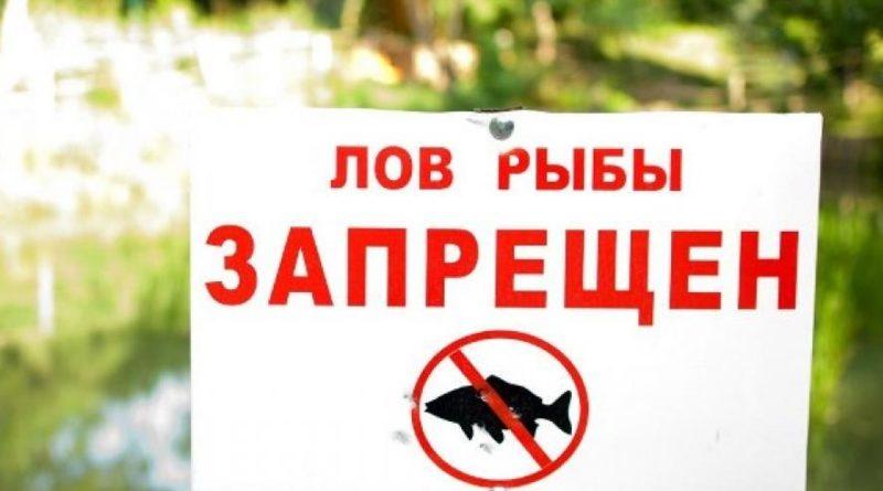 На период нереста лов рыбы запрещен в таких местах в такие сроки: на запорожском водохранилище — с 05 апреля по 13 июня; — на каховском водохранилище — с 10 апреля по 18 июня.