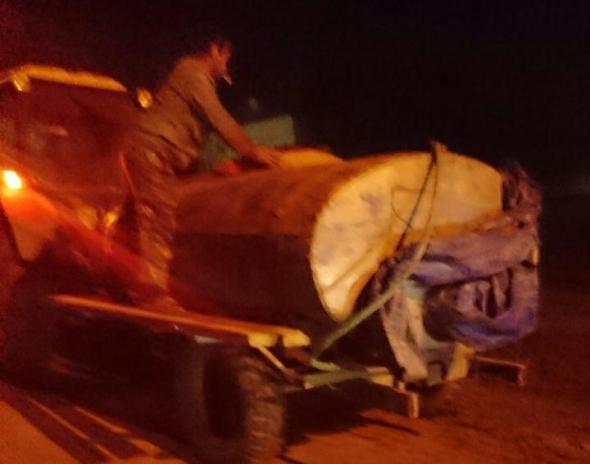 В Измаиле рыбоохрана совместно с полицией изъяли у нарушителя  400 кг рыбы без документов
