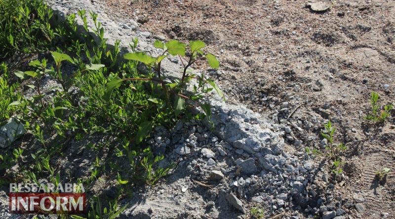 Дорогущий тротуар, превратившийся в песочницу, заинтересовал депутатов Татарбунарского горсовета