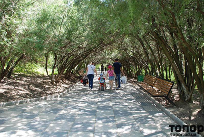 «Запах сирени зовет всех на маевку»: жители Болграда провели организованный пикник в парке им. Пушкина